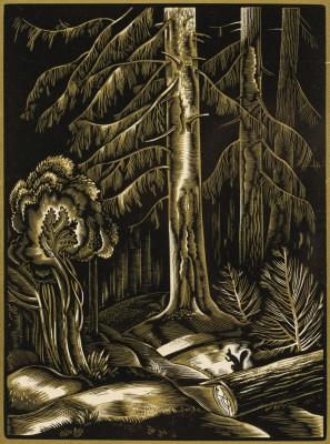"""""""Wiewiórka w lesie"""""""