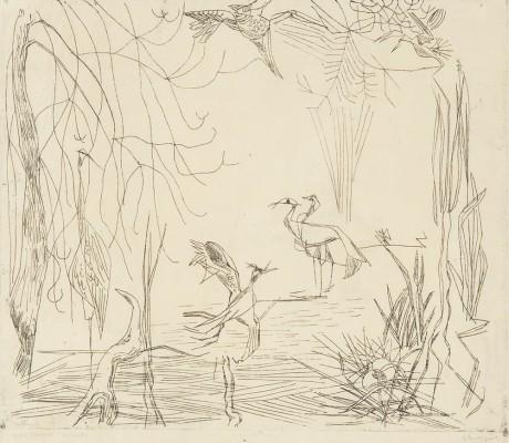 """""""Wyspa ptaków"""""""